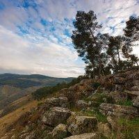 gilboa mount :: Aaron Gershon