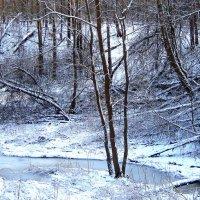Замёрзший ручей. :: Борис Митрохин