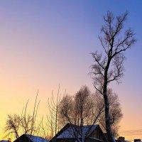 Пронизала вершины дерев желто-бархатным светом заря... :: Евгений Юрков