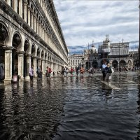 Венеция.Площадь San Marco. :: Фима Гезенцвей