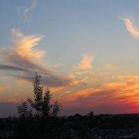 крылья заката :: владимир