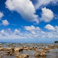 Небо, море. :: Мила