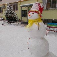 Зимние краски :: Александр Скамо