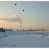 Однажды.., в студёную зимнюю пору... :: tipchik