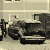 Первый снег и первые хлопоты... :: Walter