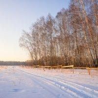 Природа Сибири зима :: Ольга Рав