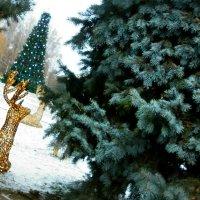 Золотые олени,голубая ель и белый снег-восхитительно ! :: Жанна Романова