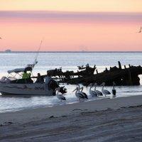 Остров Моретон-остров затонувших кораблей :: Антонина