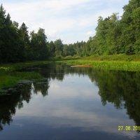 Река Поля :: Виктор Мухин