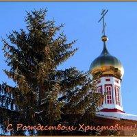 С Рождеством Христовым! :: Андрей Заломленков