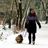 в зимнем парке :: Александр Корчемный