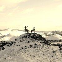 Фото скульптуры оленей :: Сергей Алексеев
