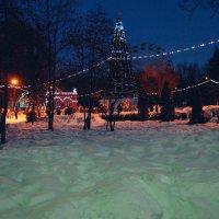 Праздник в парке. :: Света Кондрашова