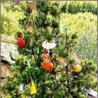 Праздник Новый Год.. :: Кай-8 (Ярослав) Забелин