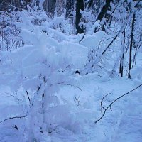 В царстве Деда Мороза-8 :: Антонида Михайлова