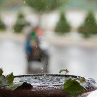 Вьетнам. Тропический ливень... :: Иван Клёц