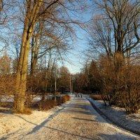 В зимнем парке... :: Валентина Жукова