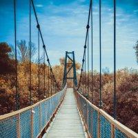 Подвесной мост :: Ольга