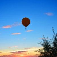 Полёт на закате. :: юрий Амосов