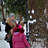 Зима улыбается... :: Юрий Анипов