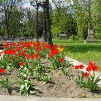 Мемориальный  Сквер  Ивано - Франковска :: Андрей  Васильевич Коляскин