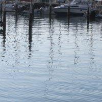 Штрихи на воде :: Герович Лилия
