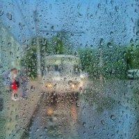 После дождя :: Дмитрий Коноплев