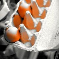 ЭКСТРА превосходство в каждом яйце ... современного человека :: Виктор | Индеец Острие Бревна