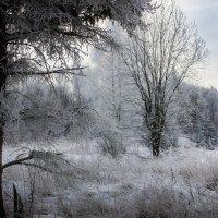 Зимний пейзаж :: Владимир Буравкин