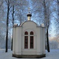 Великие Луки, январь, мороз, иней, 8... :: Владимир Павлов
