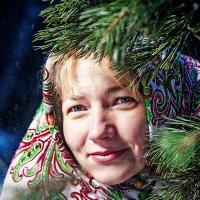 Зимний лес :: Аркадий Краснояров