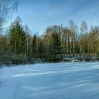 Лесное озеро :: Милешкин Владимир Алексеевич