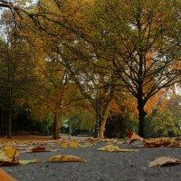 Последний день октября :: Alexander Andronik
