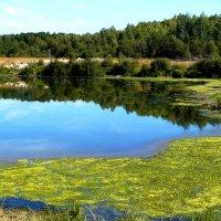 озеро :: Леонид Натапов