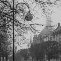 Зимний туман :: Annet-T