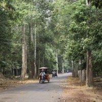 Камбоджа :: Dmitriy Sagurov