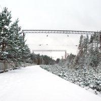 Краснофлотск :: Александра Павлова