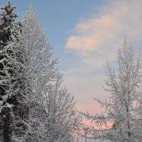 А в городе зима... :: Ольга