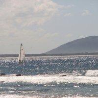 Серебро океана :: Антонина