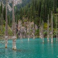 озеро Каинды :: Анастасия Бобровская