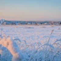 Январский пейзаж :: Ирина Никифорова
