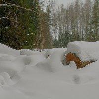 У леса на опушке... :: Владимир Хиль
