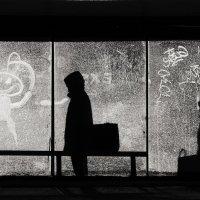 За стеклом 1 :: Виктор Никитенко