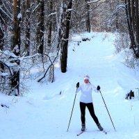 На лыжной трассе в заснеженном лесу. :: Борис Митрохин