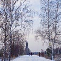 Зимняя дорога. :: Ирина Нафаня