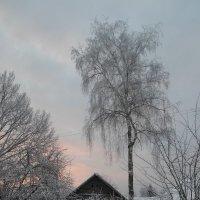 Морозное утро :: BoxerMak Mak