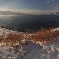 Зимний берег :: viton