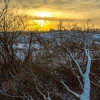 Волчья тропа :: Артем Рязанцев