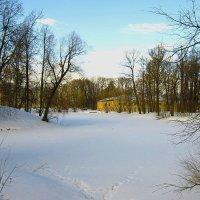 Прогуляемся по снежку? :: Tatiana Markova