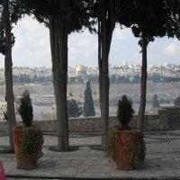 Вид на старый город в г. Иерусалиме :: Надежда